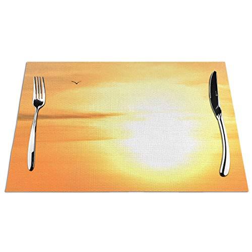 N/A - Juego de manteles individuales para mesa de comedor, lavable, de vinilo, antideslizante, resistente al calor, fácil de limpiar, con diagrama europeo, luz inversa
