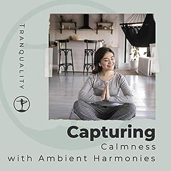 Capturing Calmness with Ambient Harmonies
