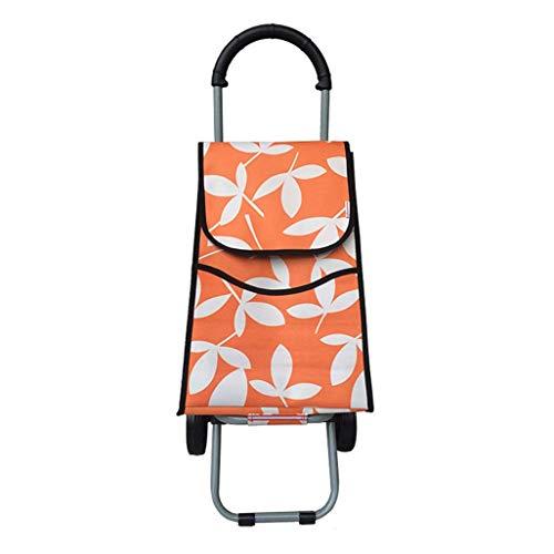 KFDQ Carritos de compras para personas mayores , Carritos de compras para personas de la tercera edad Comprar remolques de varillas, carros, alimentos, carros pequeños, escaleras plegables, cestas po