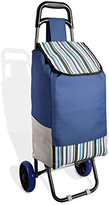 SODKK Einkaufswagen klappbar 2 stummen Rollen, mit wasserabweisender Abnehmbarer Tasche 30L & ergonomischem Griff, Stahlgestell Blau