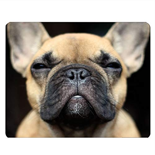 Nicokee Bulldog Gaming Mousepad Funny French Bulldog Face Mouse Pad Mouse Mat for Computer Desk Laptop Office 9.5 X 7.9 Inch Non-Slip Rubber
