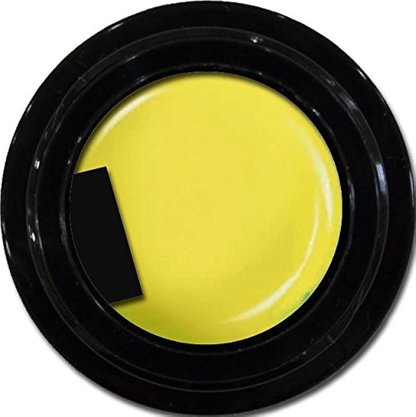 コンピューター溶けた狭いカラージェル enchant color gel M602 MoroccoYellow 3g/ マットカラージェル M602 モロッコイエロー 3グラム