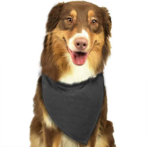 Aeykis Mathematische Gleichung0 Hundebandana, Dreieck Plaid Lätzchen Halstuch Schal für Hund Katze Haustier