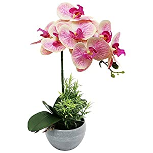 Omygarden Artificial Orchid Flowers with White Flowerpot