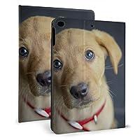 SORA キツネ 赤いラブラドール 子犬 iPad Air 2 ケース iPad Air ケース 手帳型 オートスリープ機能付き iPad Air/iPad Air 2 保護カバー ペンホルダー付き 強化ガラス液晶保護フィルム付き