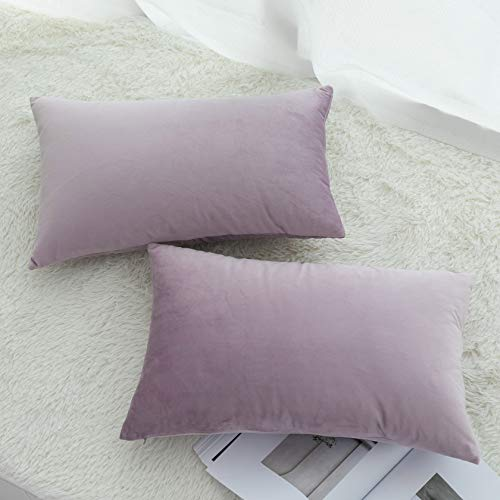 Pack of 2, UGASA Velvet Soft Solid Decorative Rectangular Throw Pillow Covers Set Cushion Cases Pillowcases for Livingroom/Couch, 12'x20'(30x50cm), Pink Lavender