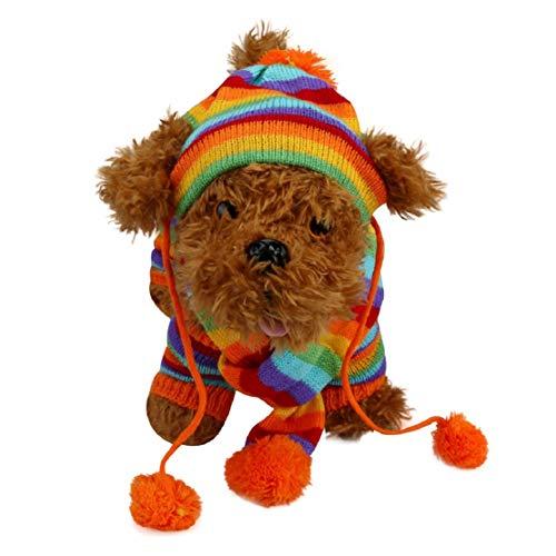 Bluelucon 6 stuks/set hond huisdier hoed sjaal beenwarmers huisdier kleding huisdier muts sjaal voetset regenboog gestreepte gebreide trui regenboog gestreepte gebreide trui