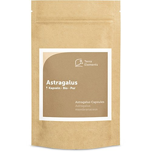 Terra Elements Bio Astragalus Kapseln (400 mg, 150 St) I Astragalus membranaceus I Tragant I 100% rein I Vegan I Rohkost
