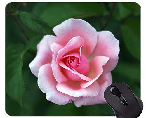 Yanteng Almohadillas para Mouse Antideslizantes, Caucho Natural, rectángulo, Alfombrillas para ratón, Naturaleza Colorida Rosa - Bordes cosidos