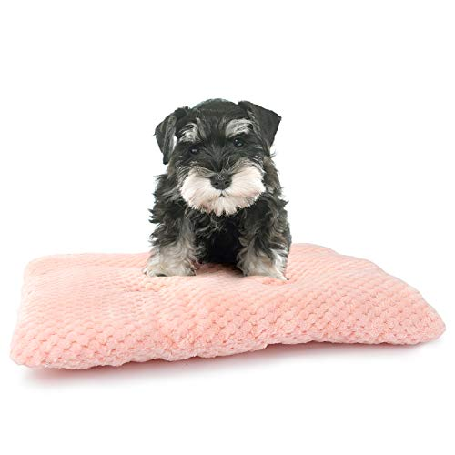 MUMUPET Plush Pet Dog Bed Pad | Machine Wash & Drying | Traditional Sofa-Style Cat Bed, Puppy Bed, Rabbit Bed | Dog Mat for Small Dogs and Puppies