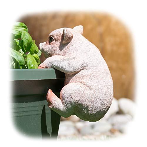 ProdBuy Home Plant Pot Hanging Garden Ornament (Pink Pig)