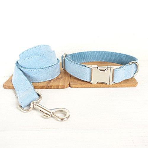 Pastell Hellblau Hundeleine und Halsband Set Einfarbige Hundeband Hunde Retriever Führleine Hundhalskette Walking Leash Schauleine Hundehalsung Klickverschluss für Klein Mittlere Große Hunde (XS)