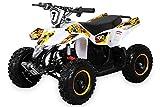 Actionbikes Motors Kinder Elektro Miniquad Fox XTR 1000 Watt 48 Volt - Gelochte Scheibenbremsen - 3 Geschwindigkeiten (Weiß Gelb)