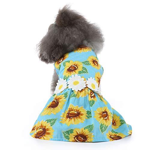 YanFeng Trajes de Verano para Perros, Vestido de Primavera y Verano para Perros, Falda de Gato para Perros pequeños, Ropa de Chihuahua para Regalo, Cachorro, Verano, cumpleaños, Fiesta