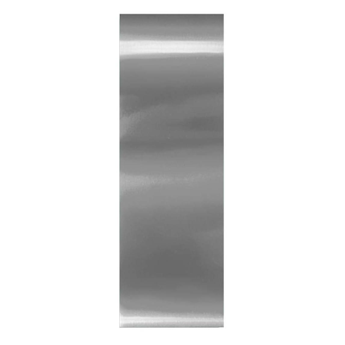 夜明けに麻酔薬肺炎Moyra スタンピングアート マジックホイル シルバー