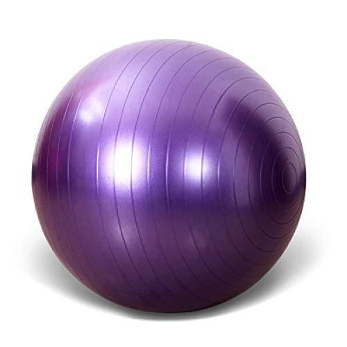 YDJGY Gymnastikball Pilates Gym Balance Fitness Gymnastikball - Inklusive Luftpumpe, 55Cm, 65Cm75Cm, 85Cm, 95Cm
