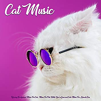 Cat Music: Relaxing Background Music For Cats, Music For Pets While You're Gone and Calm Music For Animals Ears