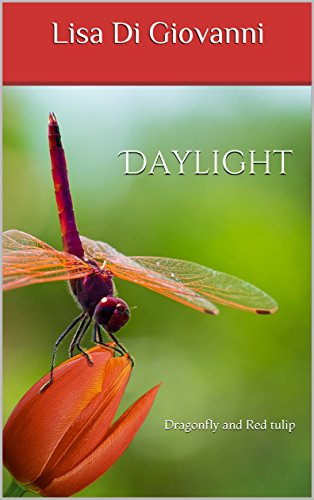Daylight: Dragonfly and Red tulip (Poems and stories Book 1) (English Edition)
