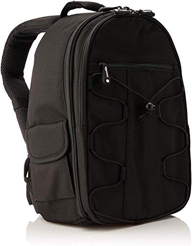 329b04cb7a10 AmazonBasics Backpack for SLR DSLR Cameras and Accessories