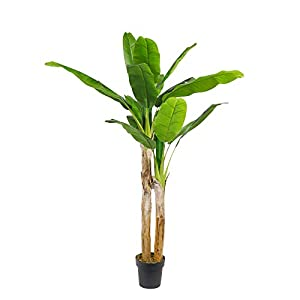 "momoplant Artificial Bird of Paradise Plant 6 Ft-70""Inchs Fake Palm Tree Potted Faux Trees for Indoor Outdoor Modern Decoration Feaux Plants in Pot for Home Office with Black Pot (Banana Tree, 70)"