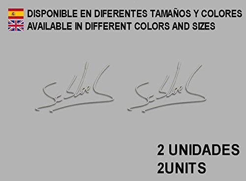 Ecoshirt 9D-5H4R-9D55 Autocollants Signature Signature Loeb F107 Vinyle Adhésifs Decal Aufkleber, Adhésifs Voiture, Argent