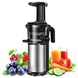 Juicer Slow Juicers Machine Portable Vertical Cold Press Juicer with Reversal Function, BPA-free Masticating Juicer with Juice Jug and Clean Brush for Vegetables and Fruits