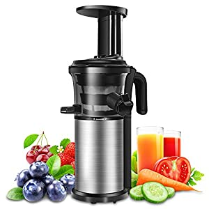Juicer Machine Portable Vertical Cold Press Juicers BPA-free Reversal Function Slow Masticating Juice Extractor with… |
