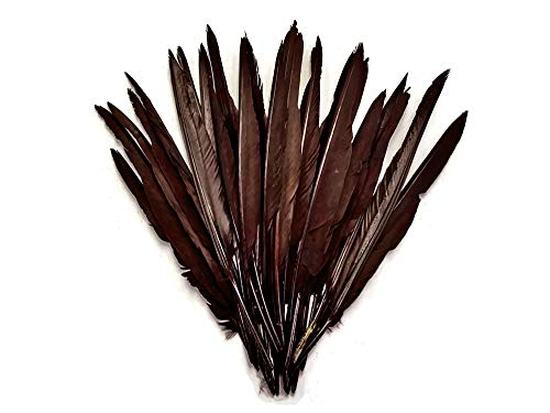 1/4 Lb. - Brown Goose Pointers Long Primaries Wing Wholesale Feathers (Bulk) DIY Halloween Costume Craft AMA | Moonlight Feather