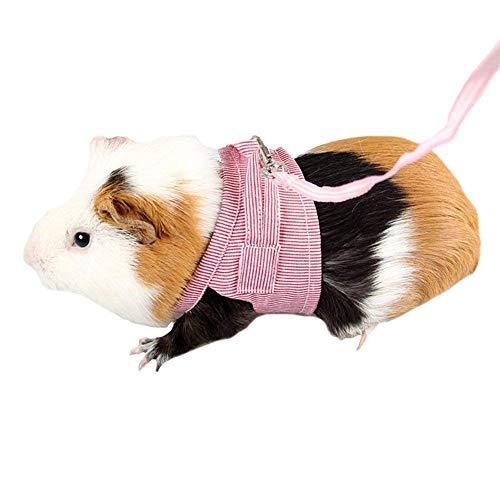 Qiyun Robe avec Laisse en Coton Doux pour Hamster...