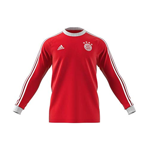 adidas Herren FC Bayern Icons Tee T-Shirt, Fcbtru, L