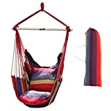 Juego de hamaca colgante de jardín ANPI, hamaca de cuerda, balancín de jardín, con dos cojines para interiores y exteriores, Hot Colors