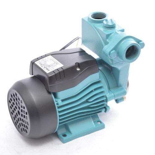 Kreiselpumpe Gartenpumpe WZI250-250 Watt 2100 L/h 3,5 bar