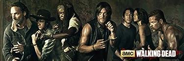 GB eye LTD, The Walking Dead, Season 5, Door Poster, 53 x 158 cm, Wood, Multi-Colour