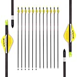 27 Inch Arrow 400 Spine Arrow Target Practice Arrow Hunting Arrow Carbon Arrows Compound Bow Recurve Bow Adult Youth Archery Indoor Outdoor Shooting Bullet Tip 12pc