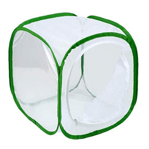 DierCosy Mesh-Netz für Insekten Faltbare Käfig Sämling Inkubator für Caterpillars Stick Insect 30 * 30 * 30cm