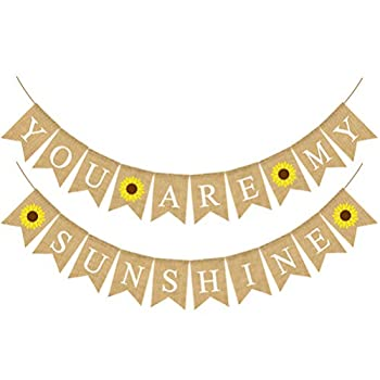 Best you are my sunshine banner Reviews