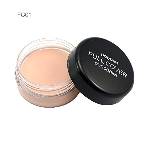 laamei 1pc Correcteur Poudre pour le Visage Professional maquillage Fondation Concealer Crème Pro Contour Maquillage Concealer