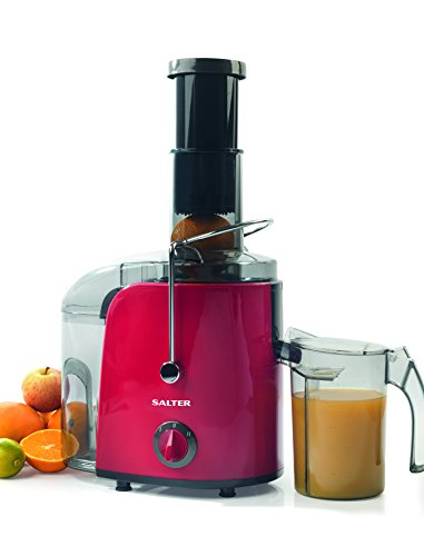 Salter EK1921 Professional Whole Fruit and Vegetable Power Juicer