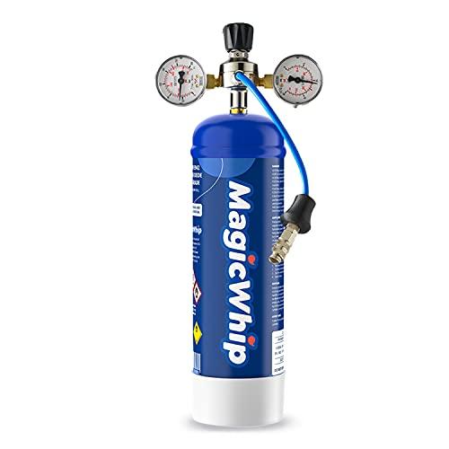 MagicWhip 580g Einwegzylinder, hochwertiger Edelstahlzylinder, 100% Einwegtank, 100% recycelbar