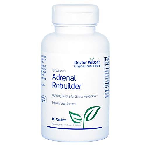 Dr Wilson's Original Formulations Adrenal Rebuilder Granular Extract, 90 Count
