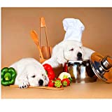 AZYVv Adultos Pintura por Números para Niños DIY Oil Painting-Dos Perros Blancos Cocinando-Regalo Personalidad Artística Juego Juguete 40X50Cm (Sin Marco)