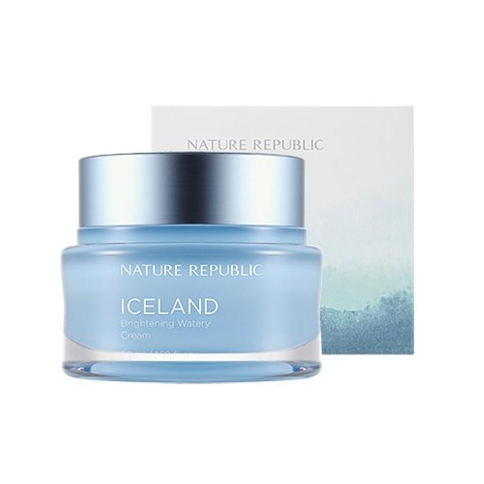 光後ろにのヒープNature Republic Iceland Brightening Watery Cream 50ml / ネイチャーリパブリック アイスランドランドブライトニング水分クリーム 50ml [並行輸入品]