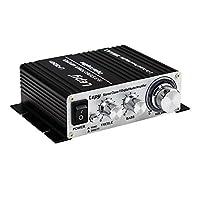 LEPY製デジタルアンプ LP-2024A+ ブラック 汎用小型アンプ TAA2008搭載 LP2024A
