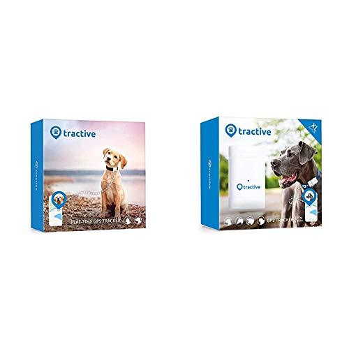 Tractive GPS Tracker für Hunde - Peilsender mit unlimitierter Reichweite & GPS Tracker XL für Hunde - Peilsender mit 6 Wochen Akku, unlimitierter Reichweite