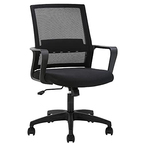 FDW Home Office Chair Ergonomic Desk Chair