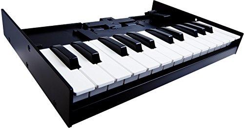 Roland K-25M Boutique Module Dock USB MIDI Keyboard, 12-Inch