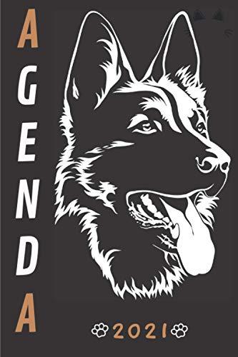 Agenda 2021 Perros: Agenda 2021 semana vista Perritos - una Semana en dos Páginas - organizador - planificador semanal y mensual 12 meses A5 - agenda ... 2021 - regalo para mujer hombre & Dogs lovers