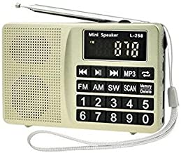LCJ Portable FM AM SW Multiband Digital Mini Radio and Pocket USB Mp3 Music Stereo Player Speaker with Rechargeable Battery