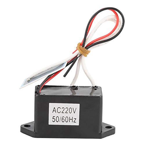 LetCart Purificador de Aire DIY - Purificador de Aire DIY Densidad de Salida de ozono 200 MG Generador de ozono 220-240 V