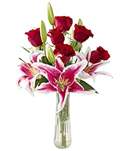 KaBloom Valentine's Day Special - Bouquet of 12 Red Roses.